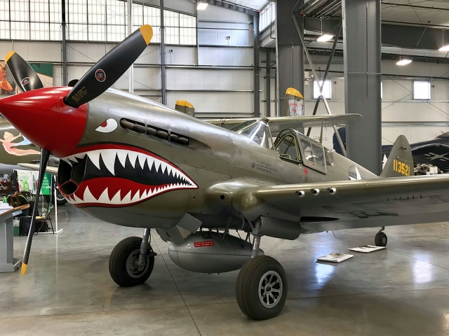 CURTISS P-40E WARHAWK WALKAROUND